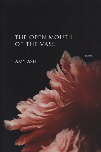 open-mouth-of-the-vase-amy-ash
