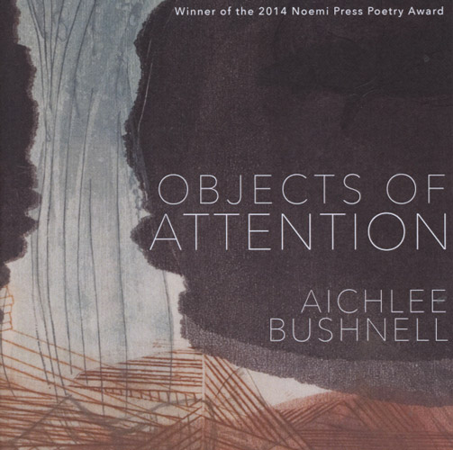 objects of attention aichlee buschnell