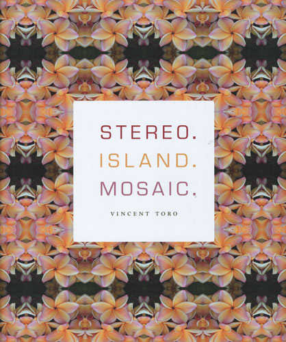 stereo island mosaic vincent toro
