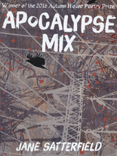 apocalypse mix jane satterfield blog