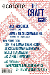 ecotone craft issue
