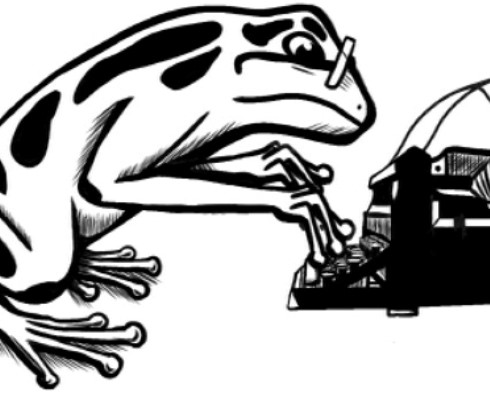flash frog logo