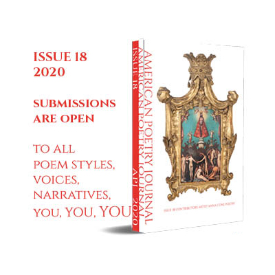american poetry journal volume 18 number 1